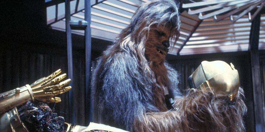 CIV: Not Peter Mayhew in original Star Tours boarding video