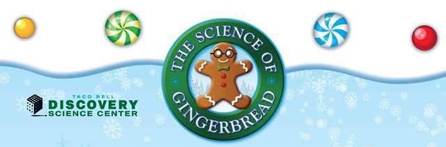 DSC-gingerbread2013