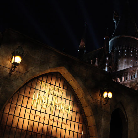 Wizarding World Hollywood Grand Opens