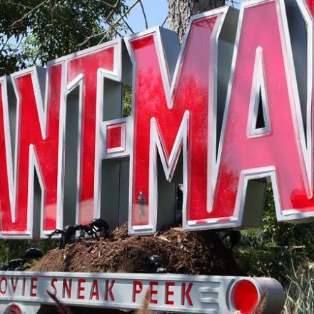 It's Tough To Be An Ant… Man